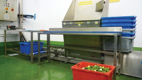 Waste and by-products handling in food processors