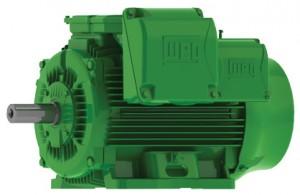 W22 Industrial Motor
