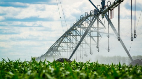 NSW irrigation modernisation program opens