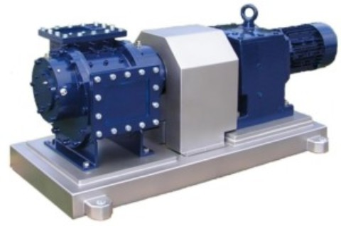 Heavy duty pumps for bone and offal transfer