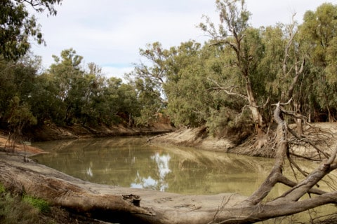 NSW drought could lead to water pumping