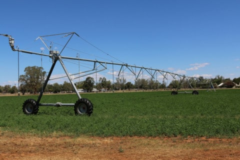 Green light for WA irrigation project