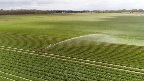 Registrations open for 2018 Irrigation Australia expo