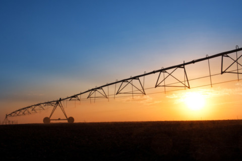 Irrigation infrastructure benefits Tasmanian farmers