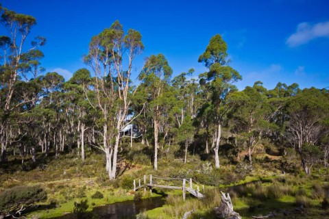 Works progress to reintroduce water supply to Tasmanian village