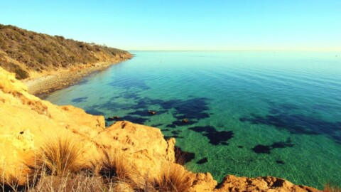 Funding for Mt Martha recycled water supply