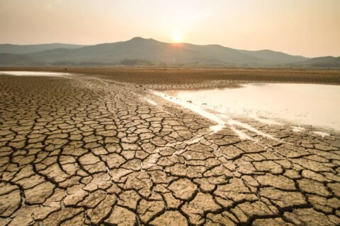 $8.5 million for NSW drought response projects