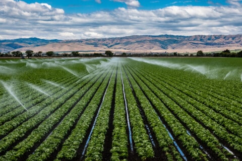 Australia's largest irrigation upgrade project complete