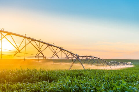 EoI sought for Round 2 Water Sales for Southern Forests Irrigation Scheme