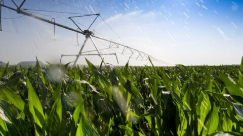 Victoria fights Federal plans for on-farm irrigation projects