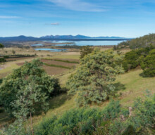 Tasmania invests $30.2m in primary industries and irrigation