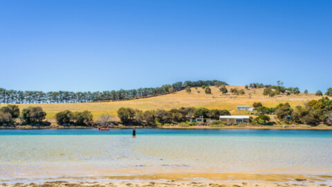 $5 million funding for TAS recycled water pipeline